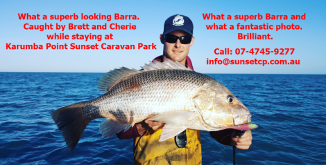 What a superb looking Barra.  Caught by Brett and Cherie while staying at Karumba Point Sunset Caravan Park. What a superb Barra and what a fantastic photo. Brilliant.