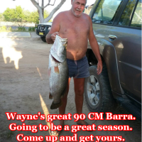Wayne's great 90 CM Barra. Going to be a great season. Come up and get yours.